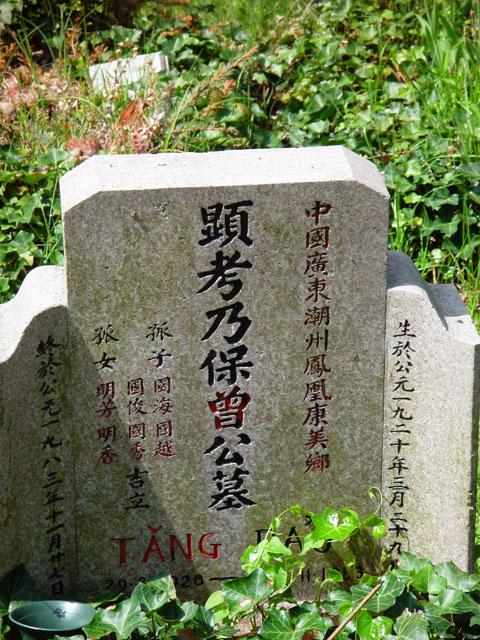 Tang Tao